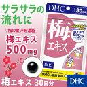 【店内P最大47倍以上&300pt開催】【DHC直販サプリメント】梅の果汁を濃縮して配合 梅