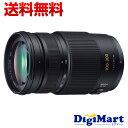 【送料無料】パナソニック Panasonic LUMIX G VARIO 100-300mm/F4.0-5.6/MEGA O.I.S. H-FS100300 ズームレンズ 【新品・並行輸入品・保証付き】