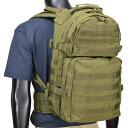 バッグ全面にMOLLEウェビングが施されたバックパック