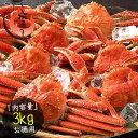 ズワイガニ 訳あり 3kg (6〜8尾入り) ボイル 姿 ずわいがに ズワイ蟹 ずわい蟹[送料無料]...