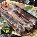 するめいか 3杯(約850g前後)日本海産 スルメイカ...