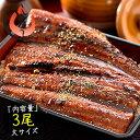 父の日 ギフト うなぎ 蒲焼き 国産 大サイズ 170g×3尾 ウナギ 鰻[送料無料]