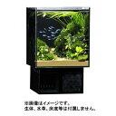 GEX グラステリア アグス ブラック OF-230 オールガラス オーバーフロー水槽 LEDライト付 淡水・海水両用 GlassteriorAGS OF230