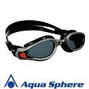 Aqua Sphere/アクアスフィア ケイマンエグゾー ダークレンズ シルバー/ブラック R[381050207700]