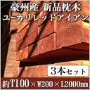 【3本セット】 豪州産新品枕木 高耐久ユーカリレッドアイアン・T100×W200×L2000mm (約40.0kg×3本)