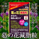 葛の花減脂粒 93粒入/約1か月分 送料無料 DMJえがお生活[葛の花 サプリメント サプリ 葛の花