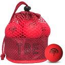 飛衛門 ゴルフボール メッシュバック マット レッド R&A公認球 メッシュバッグ マットボール 12球 1ダース 飛距離up (T-2MR) 【RCP】