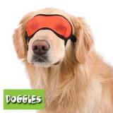 【Doggles (ドグルス)】Orange Mesh Eyewear(オレンジメッシュアイマスク) 【YDKG-k】【W3】【あす楽対応】