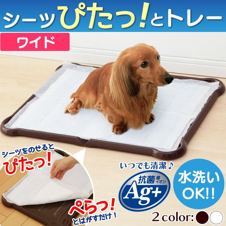 最大350円クーポン配布中シーツぴたっとトレーワイドP-SPTWホワイトブラウン犬トイレトイレトレー