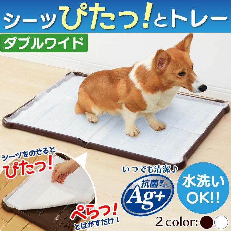 最大350円クーポン配布中シーツぴたっとトレーダブルワイドP-SPTDホワイトブラウン犬トイレトイレ