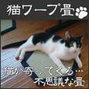 猫が寄ってくる!! 猫ワープ日本製 猫 ベッド 畳 タタミ ...