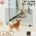 【最大500円OFFクーポン対象】 犬 ...