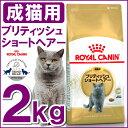 最大400円OFFクーポン配布中!ロイヤルカナン 猫 FBN ブリティッシュショートヘアー 成猫用 2kg 正規品 キャットフード プレミアムフード ドライ アダルト 成猫用 royal canin