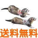 【25日1:59まで使えるクーポン配布中/送料無料】 レインボー ferret プチマリンボーダー S (レッド、ブルー) 【配送方法指定不可】