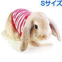 レインボー rabbit ミニボーダーTシャツ S レッド 【配送方法指定不可】