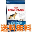 ロイヤルカナン マキシアダルト 15kg 【送料無料】