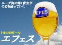 【送料無料】トルコのビールEFES PILSENER BEER(エフェスピルセンビール)1ケース(330ml缶 x 24本)★
