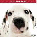 【6】2017年 国内版 THE DOG 壁掛け カレンダー ダルメシアン シール付き(2016年9月から17年12月) 犬種別 ザ・ドッグ ザドッグ