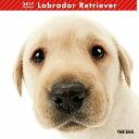 【6】2017年 国内版 THE DOG 壁掛け カレンダー ラブラドールレトリーバー シール付き(2016年9月から17年12月) 犬種別 ザ・ドッグ ザドッグ