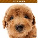【6】2017年 国内版 THE DOG 壁掛け カレンダー プードル シール付き(2016年9月から17年12月) 犬種別 ザ・ドッグ ザドッグ トイプードル