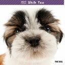 【6】2017年 国内版 THE DOG 壁掛け カレンダー シーズー シール付き(2016年9月から17年12月) 犬種別 ザ・ドッグ ザドッグ