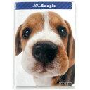 【3】2017年 国内版 THE DOG ダイアリー ビーグル B6サイズ (2016年12月から18年1月) 犬種別 ザ・ドッグ ザドッグ