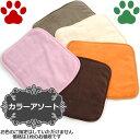 【3】 [秋冬] ペットプロ 超小型犬用/猫用 やわらかカラーブランケット Sサイズ 40x32cm 毛布 暖か シンプル