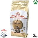 【22】 [正規品] ロイヤルカナン 猫ドライ メインクーン 2kg 成猫用(15か月以上) 猫種別 キャットフード ドライ ロイカナ