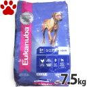 【77】 [正規品] ユーカヌバ シニア 高齢犬用(5歳以上) 大型犬用 大粒 7.5kg ドッグフード ユカヌバ