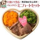 【期間限定販売】犬用 バレンタイン ケーキ・手作りご飯 セッ...