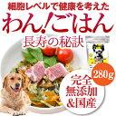 無添加 国産 ドッグフード 手作りご飯の素(わん!ごはん 長寿の秘訣 280g)【通常便】