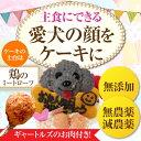 犬のケーキ(無添加 似顔...