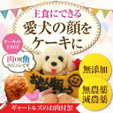 【送料無料】犬用 ケーキ(似顔絵ケーキと...