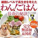ドッグフード 無添加・国産(わん!ごはん 長寿の秘訣 280g)関節・骨・足・腰の強化、免疫をアップさせる犬のご飯