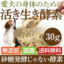 【メール便 送料無料】犬 猫用 酵素 サプリ(活き生き 酵素 30g)無添加 国産