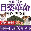 犬の視力・目に 無添加 サプリ(食べる 目薬 革命 30g)ブルーベリーとクロレラが入った犬用・サプリメント【メール便 送料無料 】