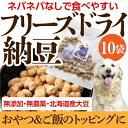 無添加 犬用おやつ(フリーズドライ 納豆 10袋)【犬 おや...