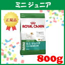 ロイヤルカナン ミニ ジュニア(子犬用) 800[AA]【D】g[ロイヤルカナン ミニジュニア 小型犬用][3182550792929]