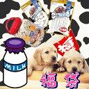 【送料無料】【福袋】ミルクのおやつセット[犬用おやつ 犬用ガム 福袋 送料込み ペット]【RCP】【e-netpet】【0228pe_fl】