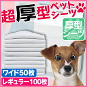 ☆NEW☆超厚型 ペットシーツ レギュラーサイズ 100枚・ワイドサイズ 50枚 アイリスオーヤマ【WEB限定】[犬 厚型 シーツ 中型犬 大型犬] 楽天