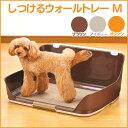 【ポイント2倍】ボンビ しつけるウォールトレー M ブラウン・アイボリー・オレンジ[犬