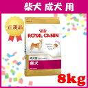 ロイヤルカナン 犬 BHN 柴犬 成犬用 8kg ≪正規品≫ 送