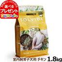 ソルビダ SOLVIDA グレインフリー チキン 室内飼育子犬用 1.8kg(お取り寄せ)ドッグフード ペット ドックフード パピー 子犬 妊娠 授乳犬 オーガニック)