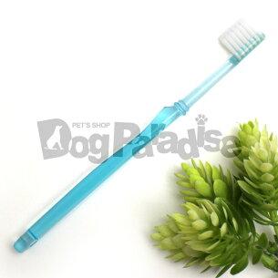 マイナス 歯ブラシ