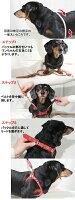 【究極のハーネス!】バディーベルト・レギュラーカラー・1号超小型犬用【BUDDYBELT】胴輪