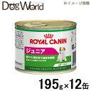 ロイヤルカナン 犬用ウェット ジュニア 195g×12缶 ★キャンペーン★