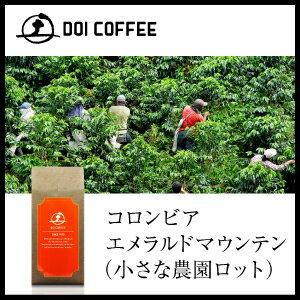 コロンビア エメラルド マウンテン コーヒー レギュラー