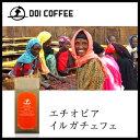 エチオピア イルガチェフェ コーヒー レギュラー