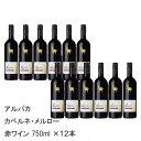 【12本セット】サンタヘレナアルパカカベルネ・メルローNVチリ赤ワイン750ml|ワインセット