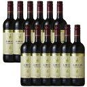 【12本セット】王様の涙ティントNVスペイン赤ワイン750ml|ワインセット